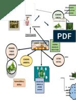 infografia de economia.docx