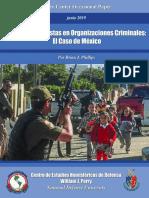 Tacticas Terroristas en Organizaciones Criminales.pdf