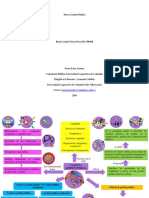 mapa mental nueva gestion publica.pdf