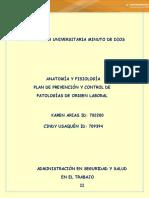 TRABAJO FINAL ANATOMIA II