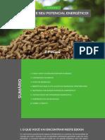 Biomassa e Seu Potencial Energtico