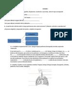 EJERCICIOS DE DIAGNOSTICO BIOLOGIA