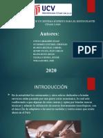 GRUPO 5_SIS-INT 2020.pptx