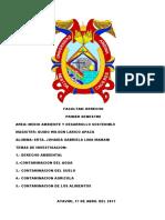 DERECHO INVESTIGACION AMBIENTAL.docx