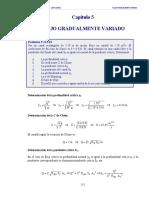 Flujo Gradualmente Variado - Fernández
