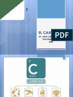 EL CARBONO.pdf