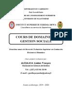 COURS DE DOMAINE DE GESTION