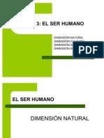 1. TEORIAS SB LA EVOLUCIÓN MODIFICADO