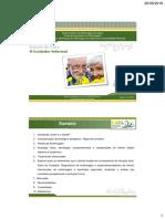 ICVA-Final.pdf