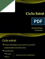 cicloestral.pptx