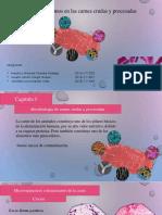 microbiologia de carnes crudas y procesadas (1).pdf