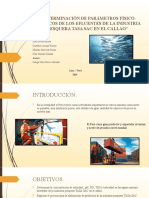 ppt final ambiental