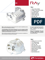 ray-dsA4-en.pdf