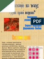 Групи крові людини