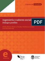 Ingeniería y Saberes Sociales