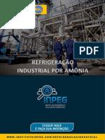 Webinar Refrigeração Industrial.pdf