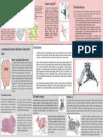 DESEMPEÑO1_DURAND1_PUCHURI2_VELASQUEZ3.pdf