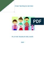 PLAN BAPE - 2019.docx