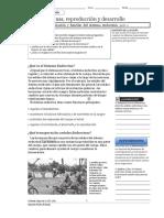 hormonasreproduccionydesarrollo-160717223852