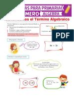 9.Partes-del-Término-Algebraico-para-Primero-de-Primaria