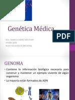 1 Estructura y organización del genoma humano