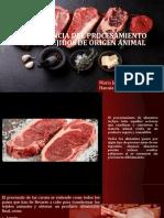 1IMPORTANCIA DEL PROCESAMIENTO DE LOS TEJIDOS DE ORIGEN