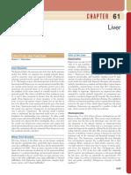 liver-2013.pdf