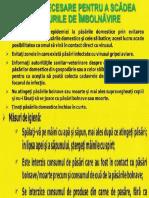 0gripa_aviara (1)