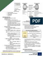 [Pedia 3A] Nephrology-Dr. Matheus (Vision)