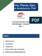 1 SESION ANATOMIA (1).pdf
