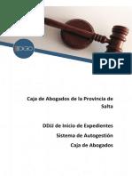 MANUAL DE FUNCIONES DDJJ Inicio de Expedientes.pdf