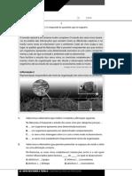 teste1[1].pdf