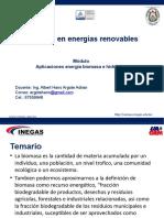 Plantilla-INEGAS-2019  BIOMASA _ SIG