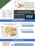 BLOQUEO DE RAMA