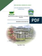 DESHIDRATACION OSMOTICA PAPAYA.docx