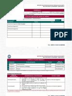 Reporte participación y plan de trabajo