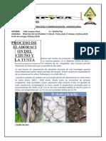 UMSA- ELABORACION DE CHUÑO Y TUNTA
