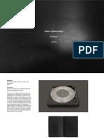 pedro-zylbersztajn_site-portfolio_portugues.pdf