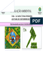 3 Aula - TAMB- LEG -  remotas2020 - CRIMES AMBIENTAIS - final.pdf