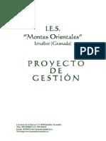 PROYECTO DE GESTION