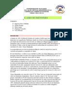 CASO SUMITOMO.docx