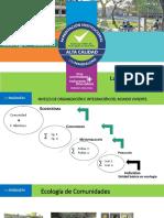 Comunidad 2020. pesca.pdf