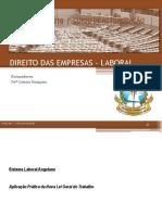 Direito laboral.pdf