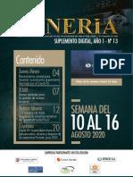 SUPLEMENTO MINERÍA 13