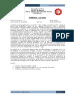 IIPracticaCalificada-2013-I.docx