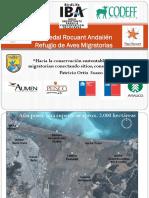 7.-Refugio-de-humedales.pdf