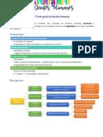 7. Direitos Humanos.pdf