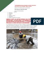 rehabilitación de suelos contaminados.docx