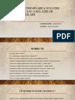 Elaborarea-3-Crerciun-Sorin-S1704.pptx