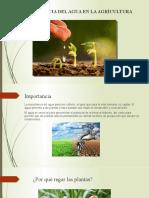 Importancia del agua en la agricultura Oficial